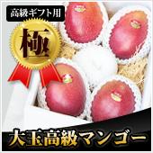 【極】高級ギフト用マンゴー